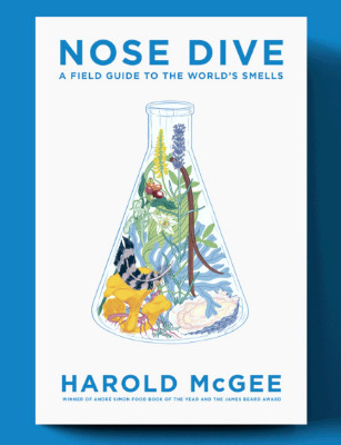 Nose-Dive-Cover-Reveal.gif copy